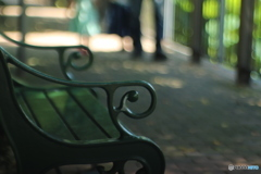 木蔭のベンチ