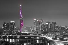 福岡タワー、ラスト。ここは愛宕神社。