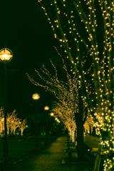 クリスマス感