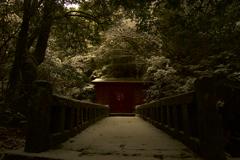 黄金色の稲荷神社