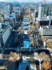 初冬の大通公園