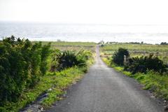海への小道