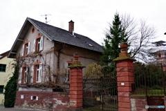 Rastattぶらぶら 植物の巻き付いた家