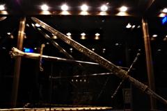ウィーン3日目 王宮 宝物展 皇帝の剣