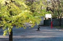 近所散歩 (フィルム)
