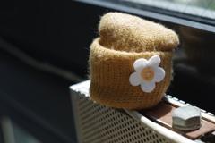 外交官の家 端午の節句 帽子をかぶるボルト
