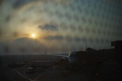 ウィ-ン・チェコの旅 ド-ハ空港での夜明け