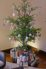 エリスマン邸 デンマークのクリスマス (9)