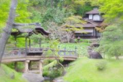 soft focusレンズで三渓園 The Sankeien