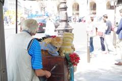 パリ中心 猫で小判を稼ぐ人
