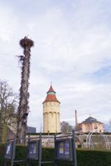 Rastattぶらぶら 大きな鳥がいる