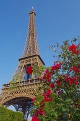 赤い花とエッフェル塔