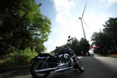 ハーレーと風車
