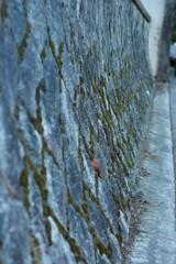 苔の石垣 その②
