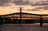 未来へのかけ橋