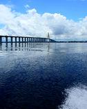 アマゾンに架かる橋(ネグロ川橋)