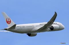 「青色」 JAL 787-8 JA840J 飛行