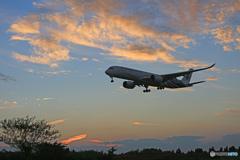 「青色」 Malaysia A350-941 到着です