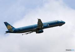 「青色」 Vietnam A321-231 VN-A335 飛行