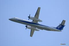 「良い天気」 ANA ボンバル DHC-8-400 Takeoff