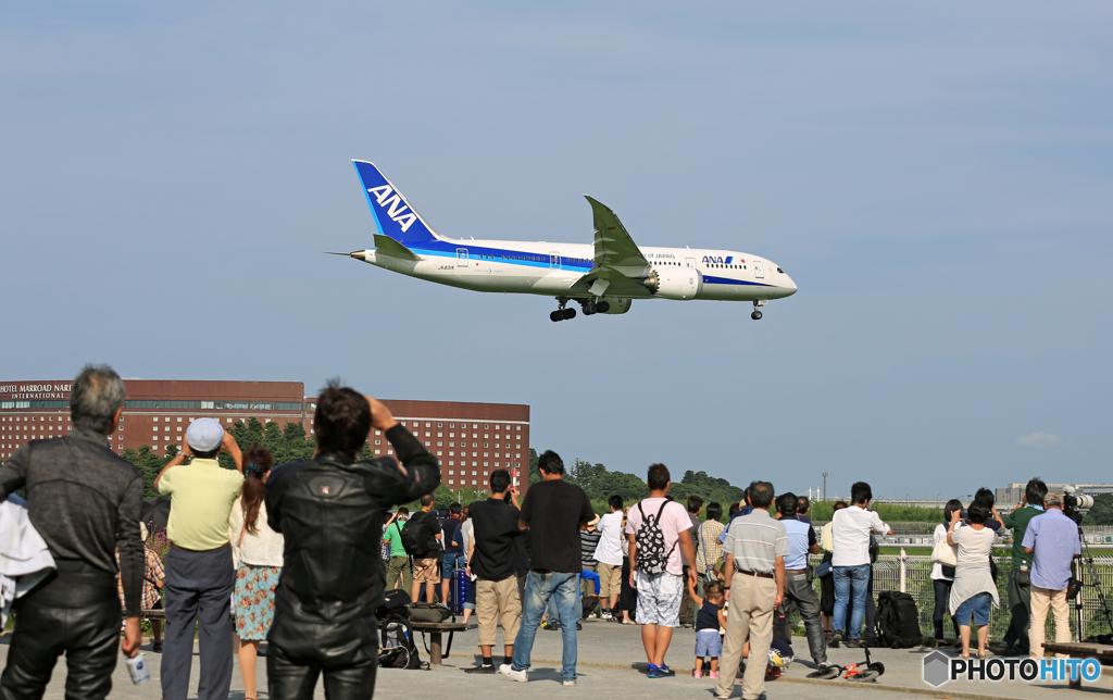 「晴れ」 ANA 787-8 JA831A みんなで一緒に