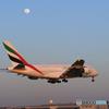「SKY」 エミレーツ航空 A380-861 A6-EUK 到着です