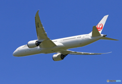 「ぶるー」 JAL 787-9 JA872J 出発です