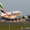 「すかい」 エミレーツ動物愛護機A380-861 Landing