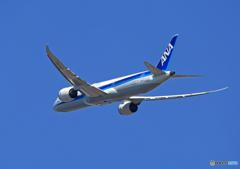 「良い空~」 ANA 787-9 JA875A 出発です