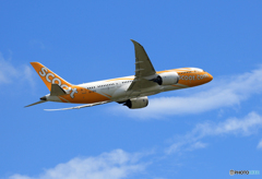 「SKY」 scoot 787-9 9V-OFD Takeoff