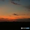 「ぶるー」 シルエット・767着地前