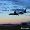 「青色が好き」 シルエット ANA 787-9 到着