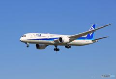 「はれ」 ANA 787-9 JA891A 着陸します