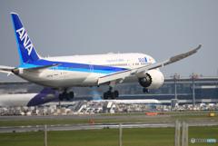 「青空」 ANA 787-9 JA874A Landing