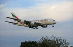「青い空」が一番エミレーツ航空A380-861 A6-EUH着陸