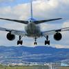 「青が大好き」☀ ANA 777-200 JA714A 飛行