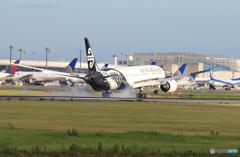 「SKY」 Air NZ' 787-9 ZK-NZC Landing