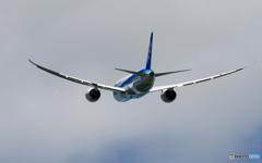 「良い天気」 ANA 787-8 JA822A 離陸