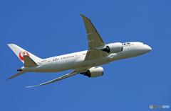 「青い空」が一番 JAL 787-8 JA845J離陸