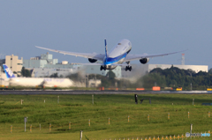 「晴れ」 ANA フラワージェット JA85AN 飛ぶ