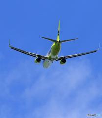 「青色」 JIN AIR 737 飛行