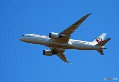 「良い天気」 JAL 787-8 JA844J Takeoff