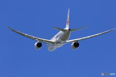 「良い天気」 JAL 787-8 JA843A 離陸