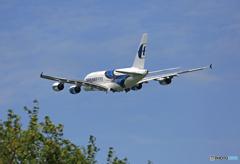 「青色が好き」 Malaysia A380-841 9M-MNB 出発