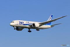 「晴れ」 ANA 787-8 JA820A 着陸