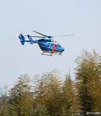 千葉県警ヘリ「かとり」kawasaki BK117空港警備です