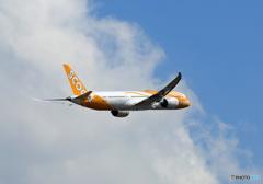 「青空」 scoot 787-9 9V-OJD 離陸 します