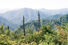 蒲生岳山頂にて