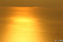 黄金に輝く砂漠のよう
