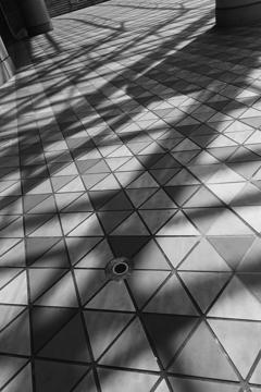 東京ドーム 床に落ちる影